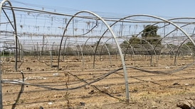 Meet the farmer on the frontline of Jordan's water crisis