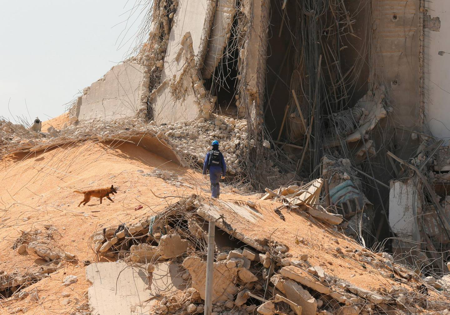 French rescue team member and a search and rescue dog walk near the damaged grain silo at the site of Tuesday's blast, at Beirut's port area, Lebanon, August 7, 2020. REUTERS/Mohamed Azakir