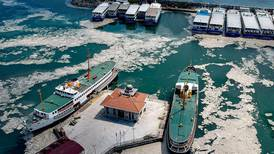 Turkey vows to tackle 'sea snot' choking waters off Istanbul
